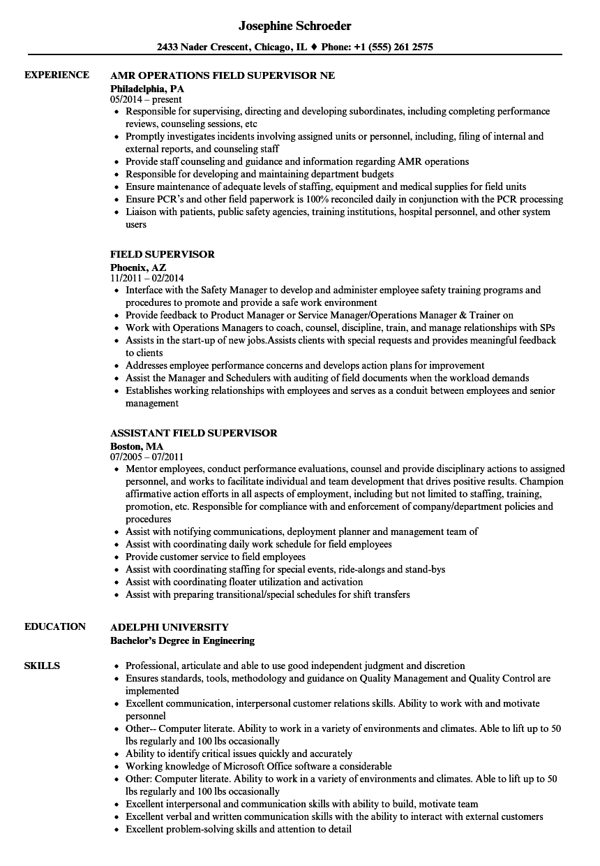 download field supervisor resume sample as image file - Supervisor Resume Examples