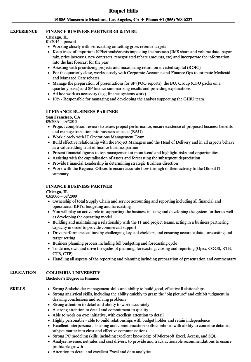 finance business partner resume samples