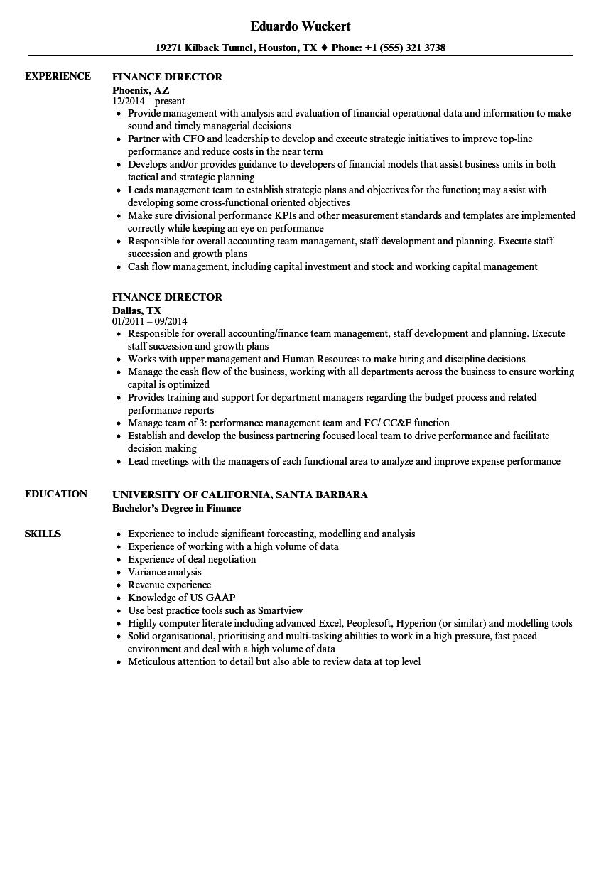 Finance Director Resume Samples Velvet Jobs