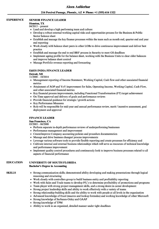 Download Finance Leader Resume Sample As Image File