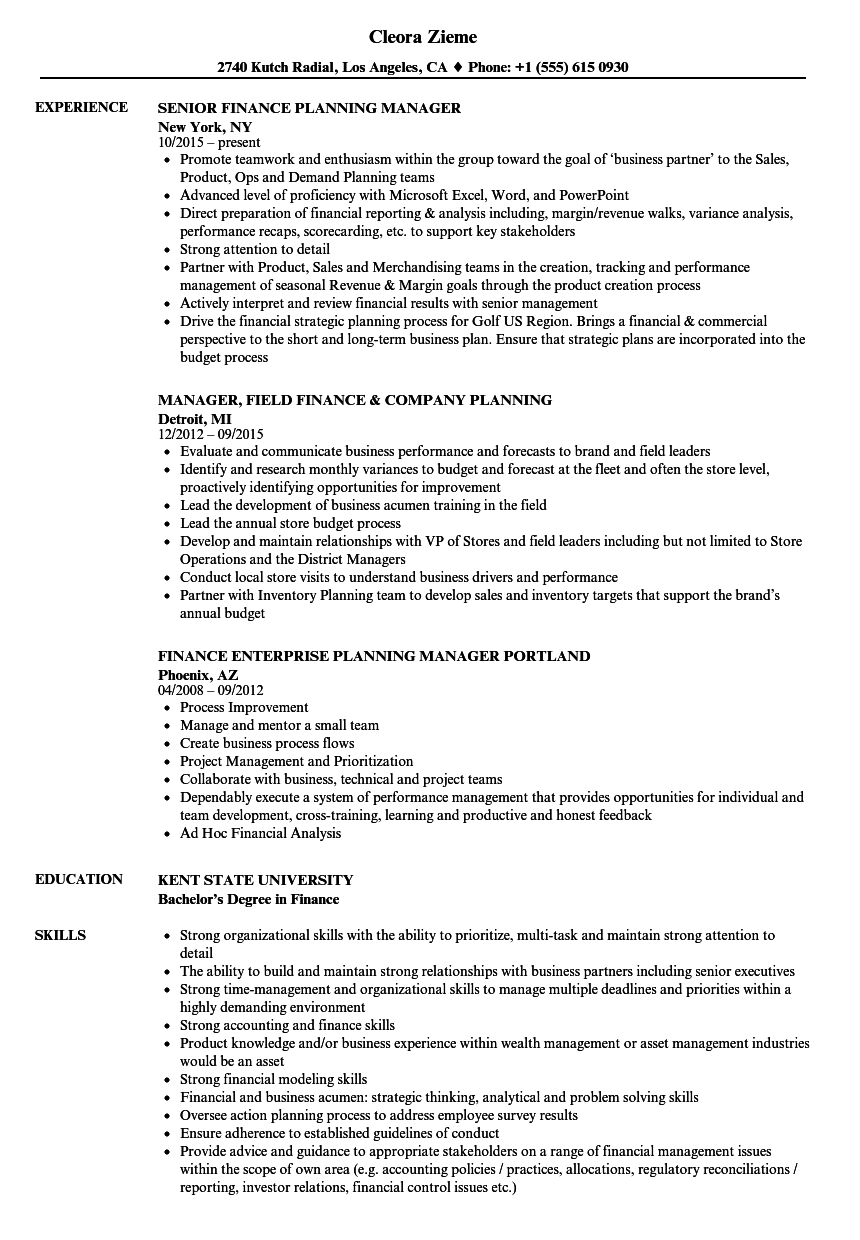 Finance Manager, Planning Resume Samples | Velvet Jobs