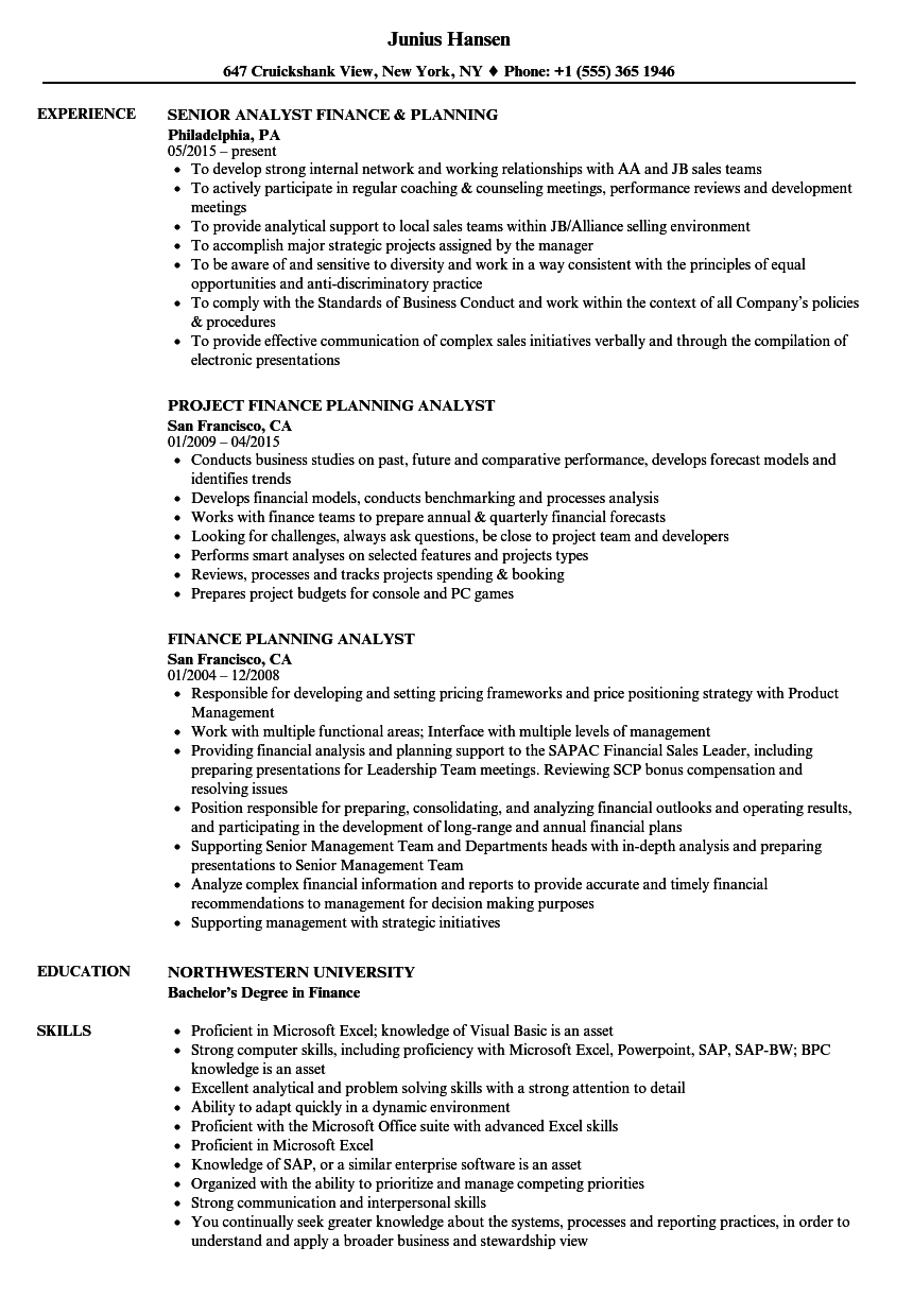Download Finance U0026 Planning Resume Sample As Image File  Resume For Finance