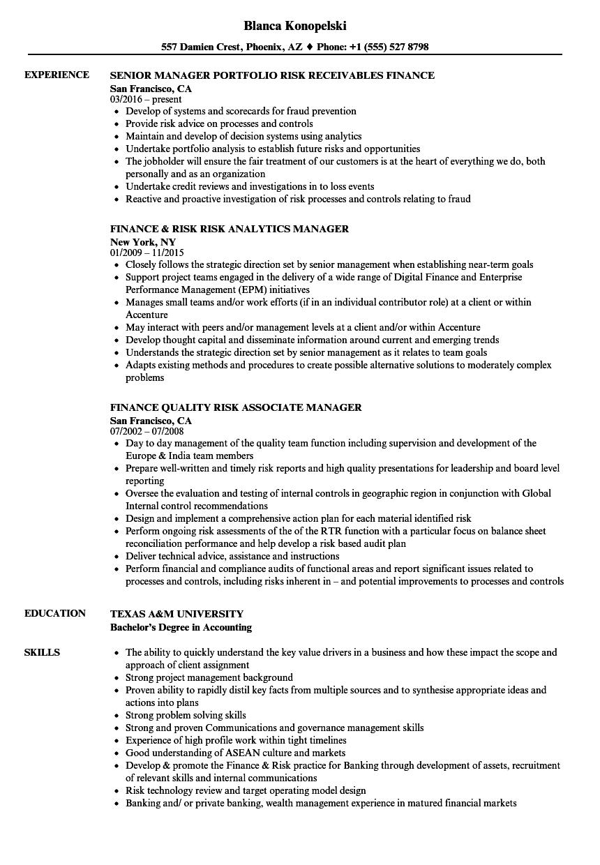 finance  u0026 risk manager resume samples