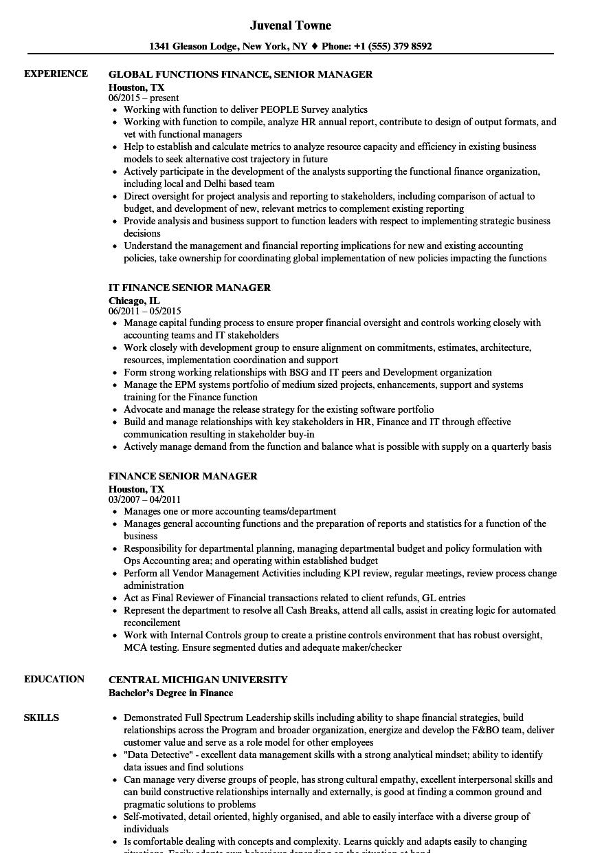 Finance Senior Manager Resume Samples Velvet Jobs
