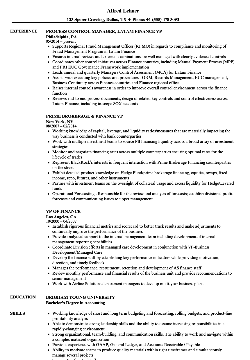 finance vp resume samples velvet jobs