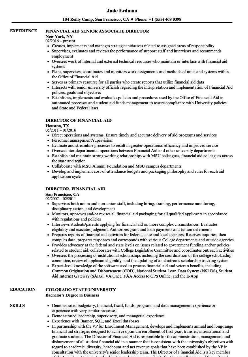Download Financial Aid Director Resume Sample As Image File  Director Resume