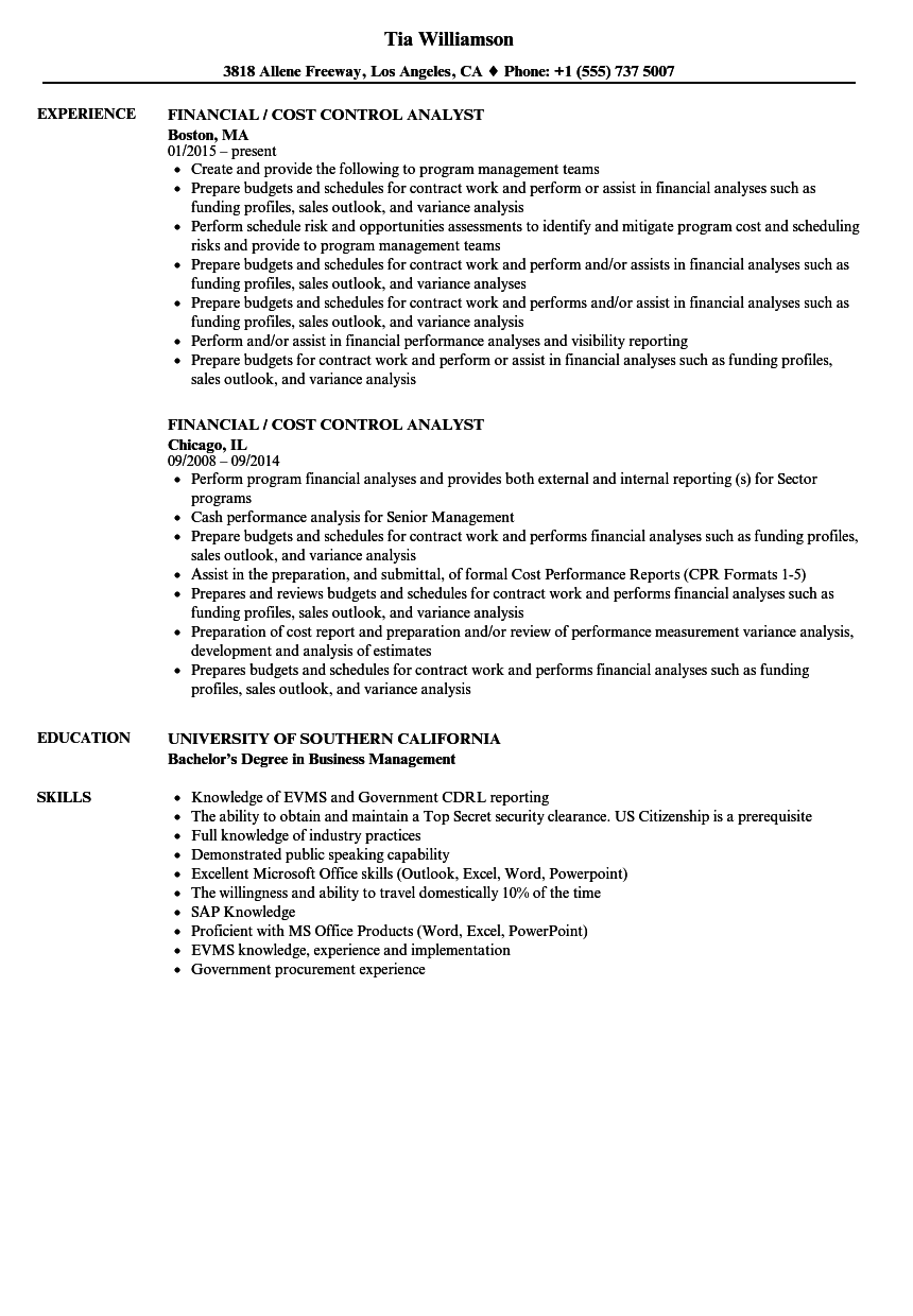 financial    cost control analyst resume samples