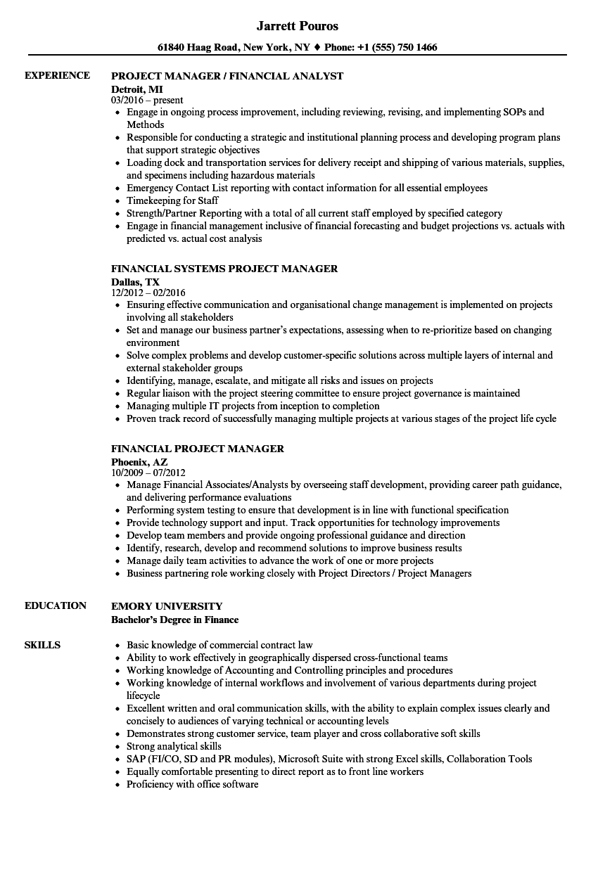 financial project manager resume samples