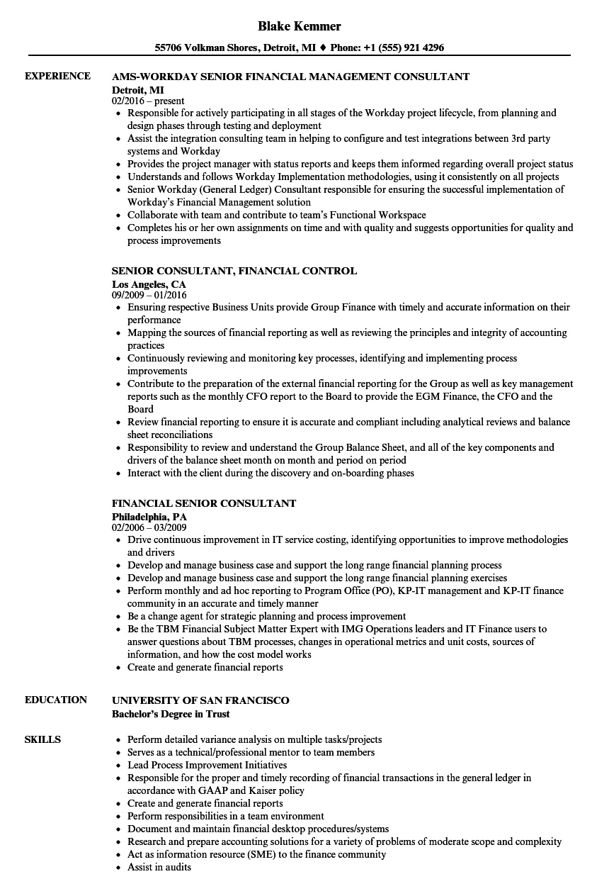 financial senior consultant resume samples