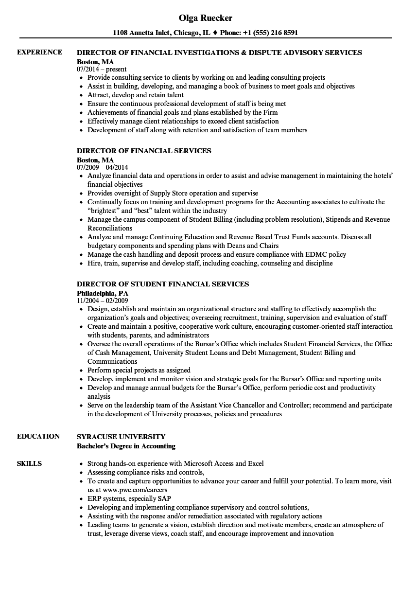 download financial services director resume sample as image file