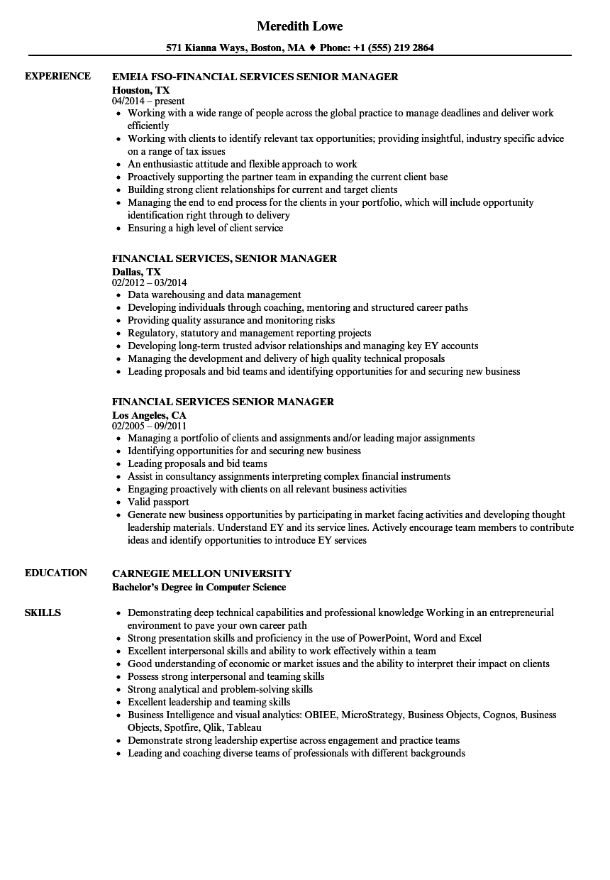 download financial services senior manager resume sample as image file