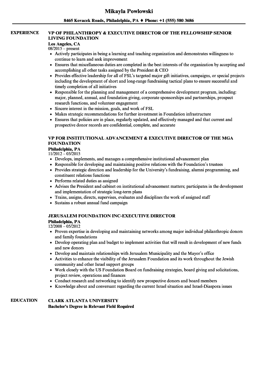 Foundation Executive Director Resume Samples | Velvet Jobs