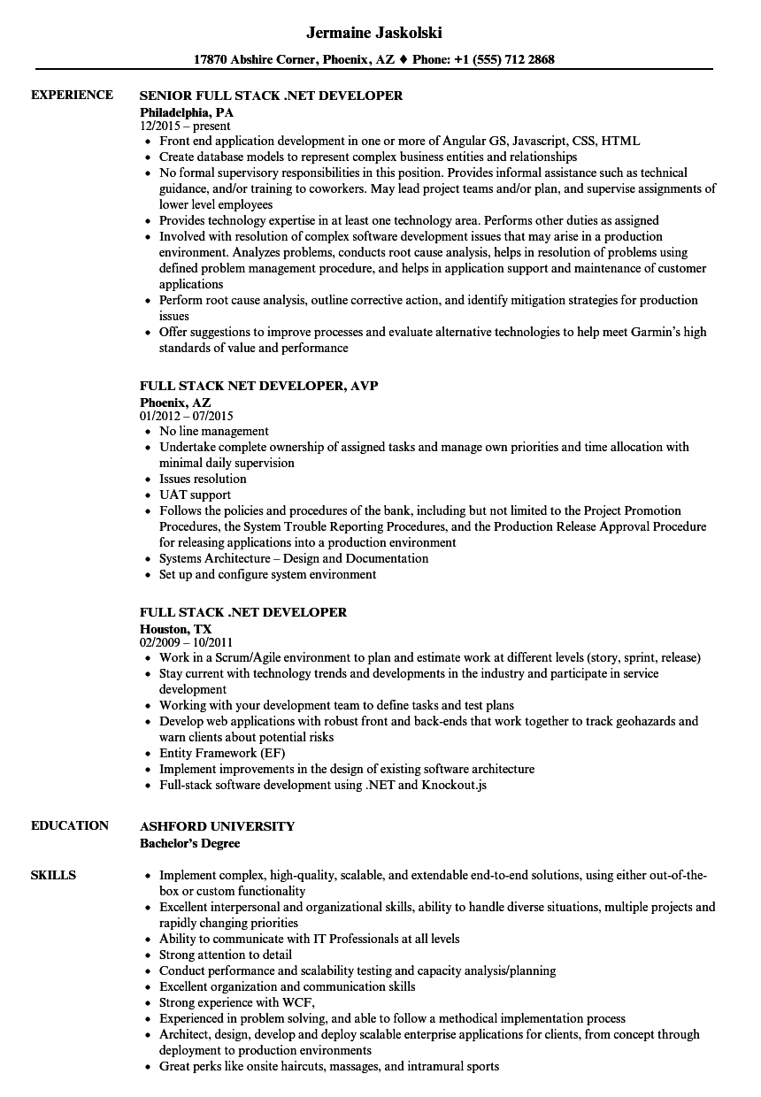 net developer resume sample as image file