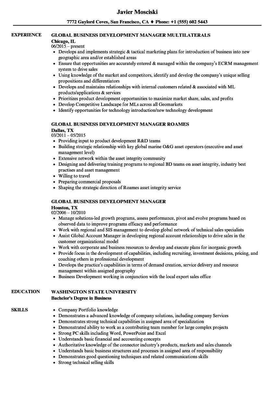 Global Business Development Manager Resume Samples Velvet Jobs