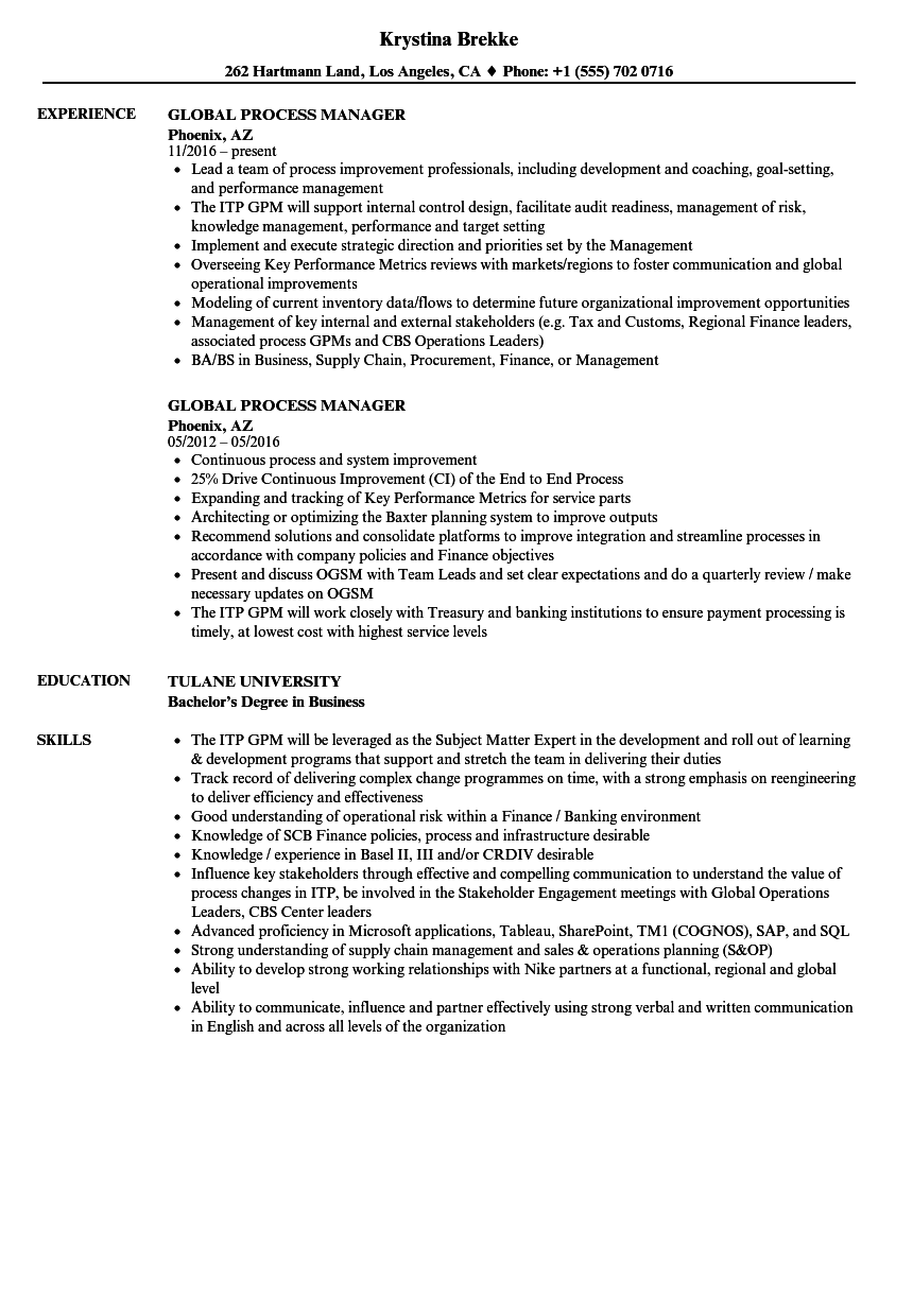 Global Process Manager Resume Samples | Velvet Jobs