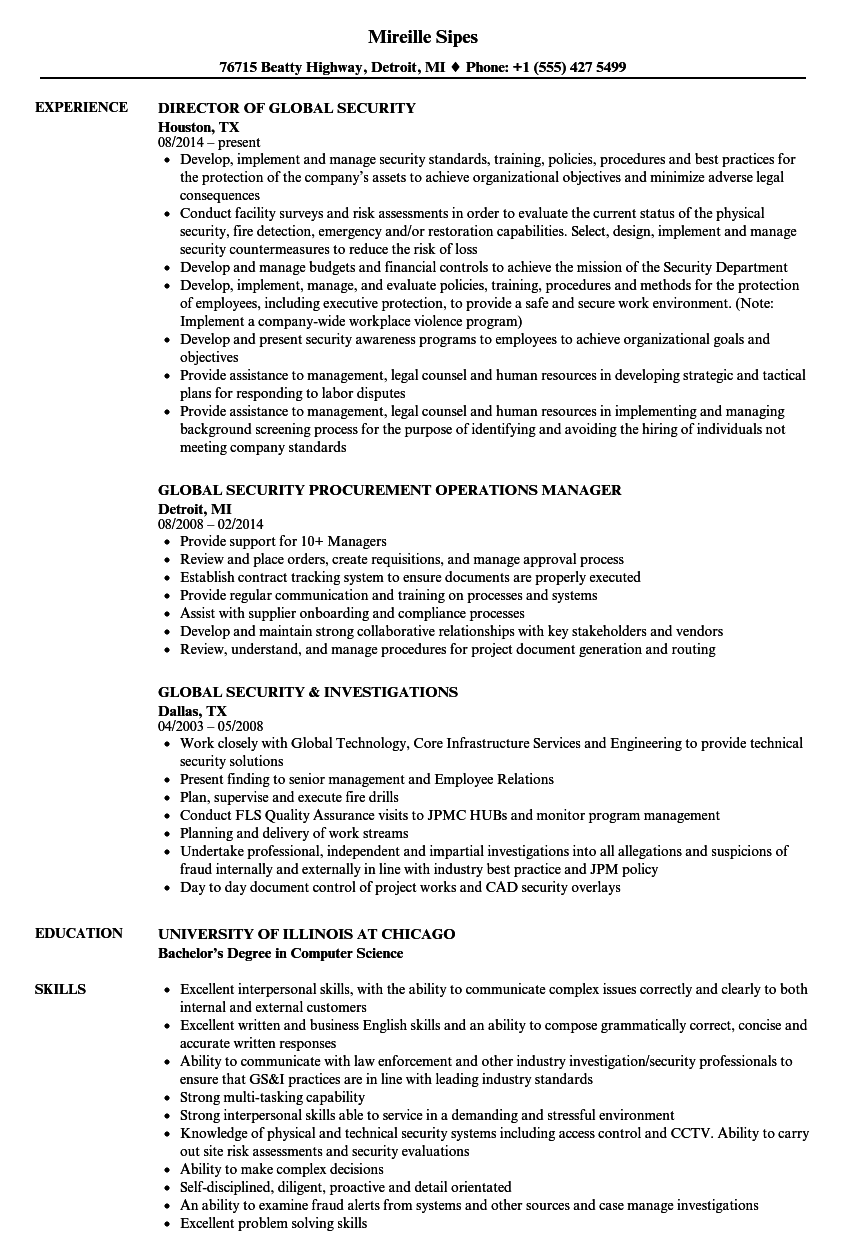 Global Security Resume Samples | Velvet Jobs