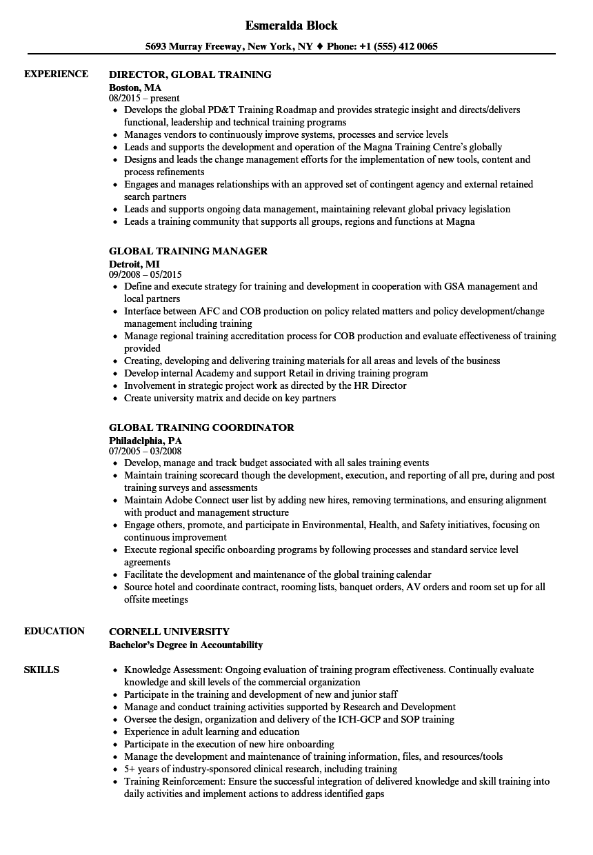 Global Training Resume Samples Velvet Jobs