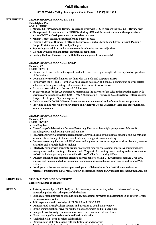 group finance manager resume samples