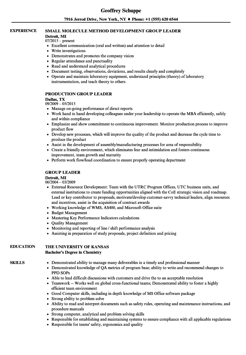 group leader resume samples