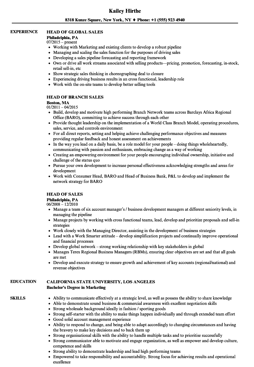 head sales resume samples velvet jobs