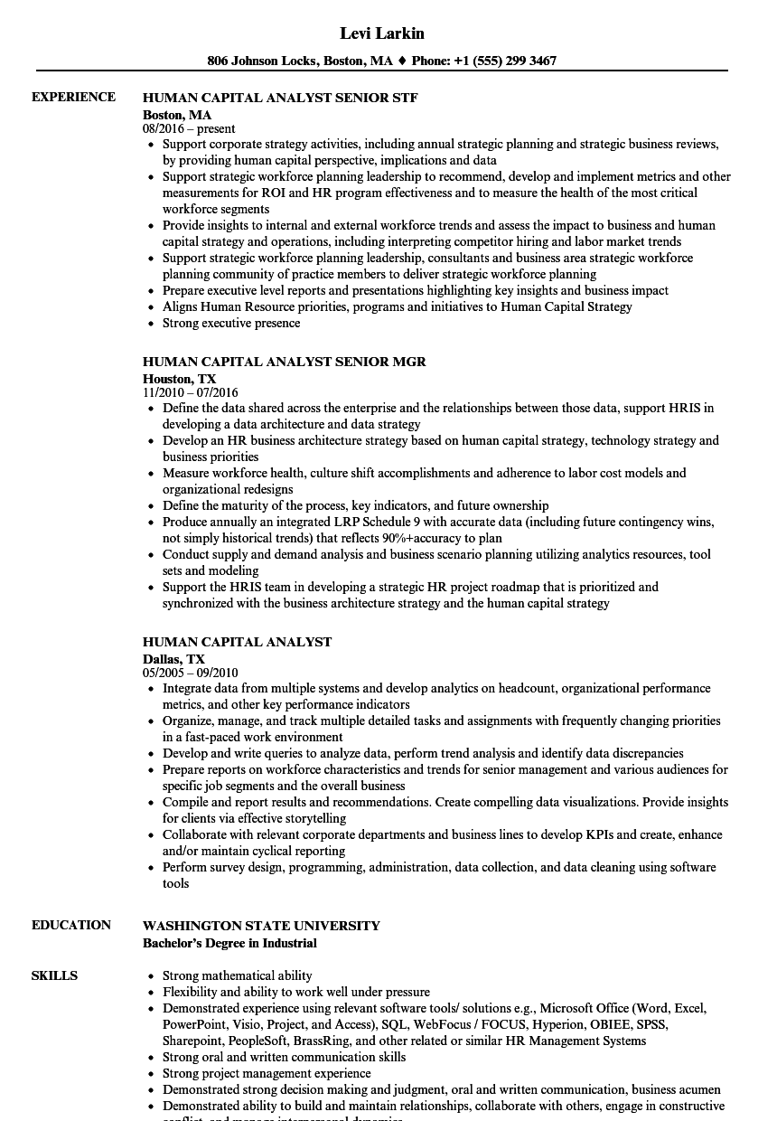 Human Capital Analyst Resume Samples Velvet Jobs