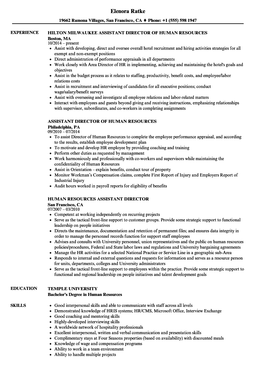 Download Human Resources Assistant Director Resume Sample As Image File