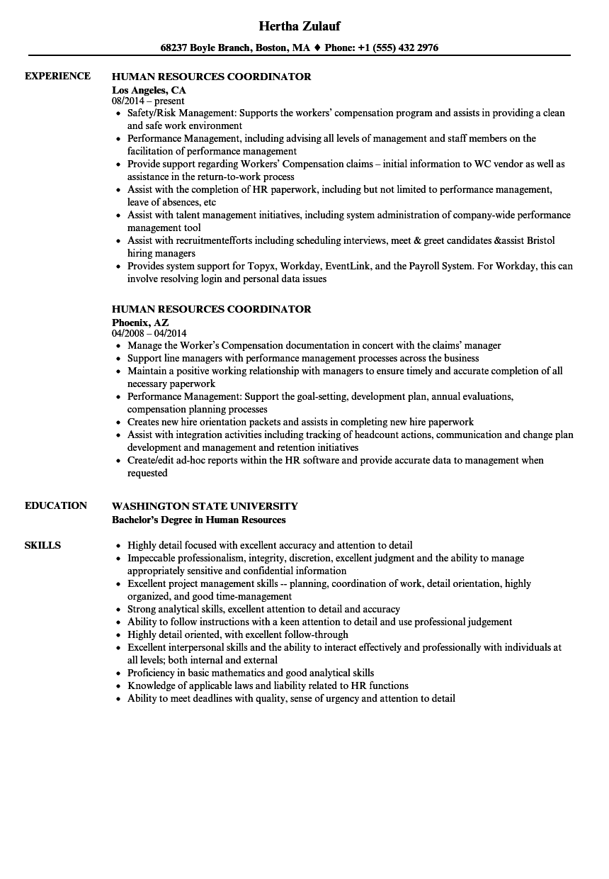 human resources coordinator resume samples velvet jobs