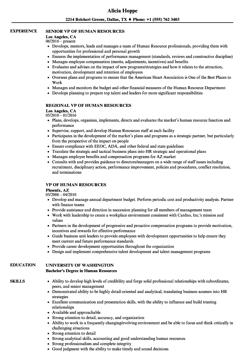 human resources vp resume samples