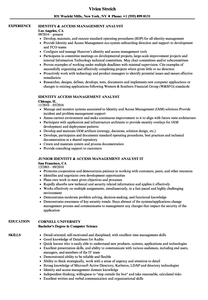 Download Identity U0026 Access Management Analyst Resume Sample As Image File  Management Resume Samples