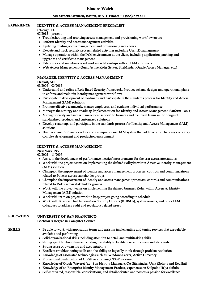 Identity & Access Management Resume Samples | Velvet Jobs