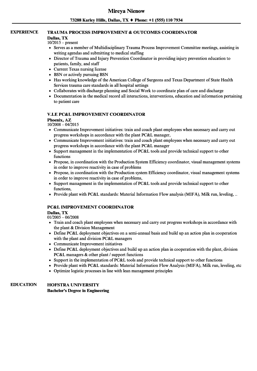 improvement coordinator resume samples