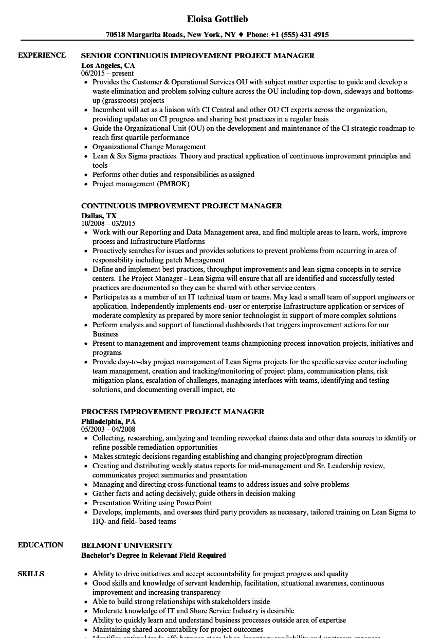 Improvement Project Manager Resume Samples | Velvet Jobs