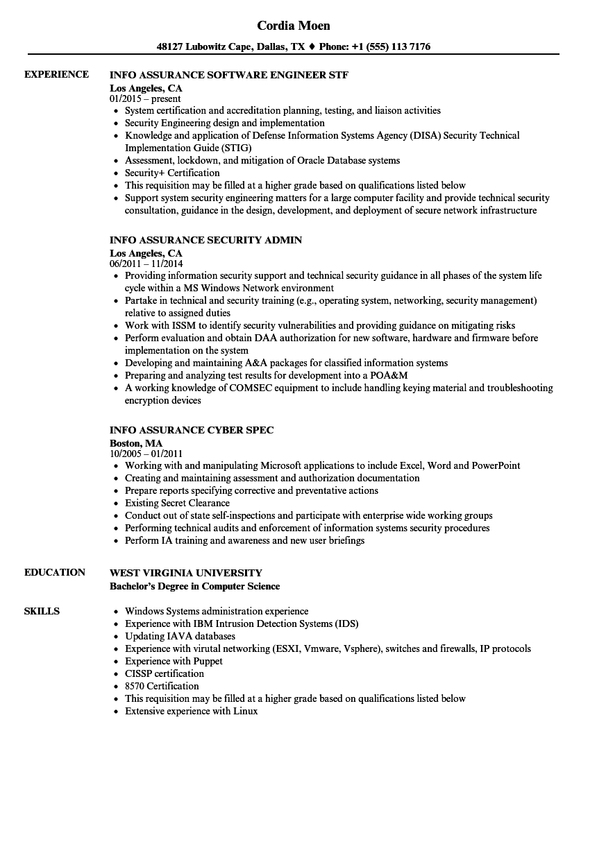 info assurance resume samples velvet jobs