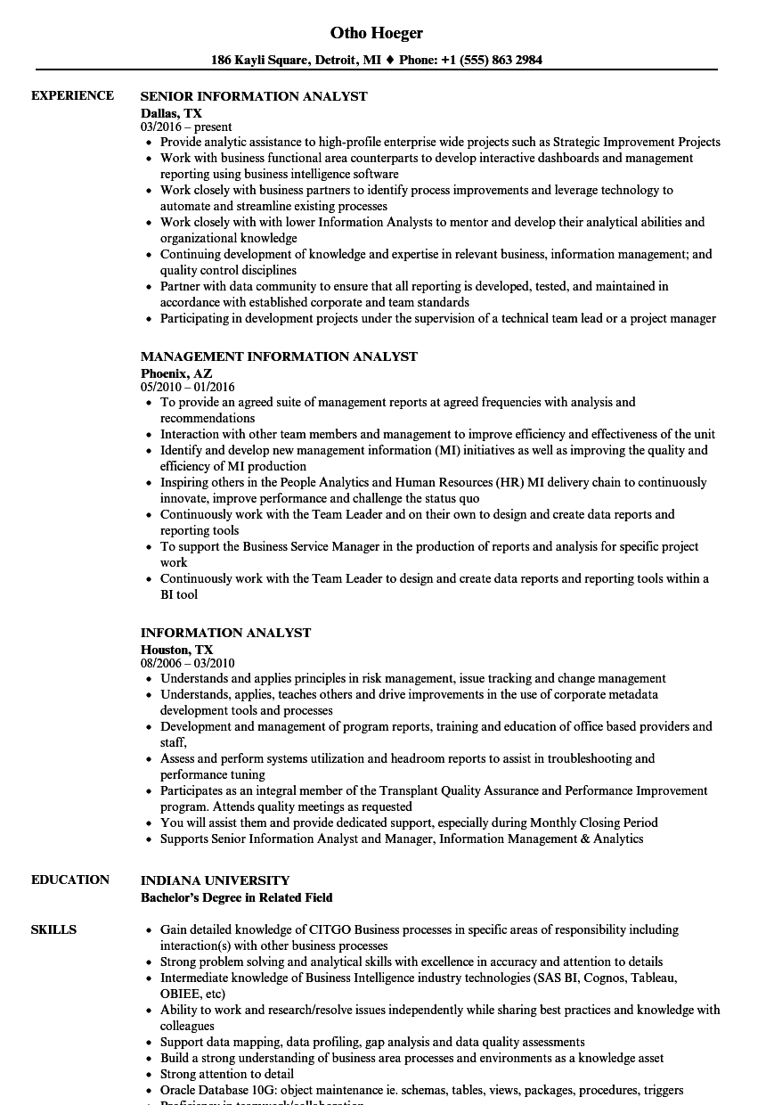download information analyst resume sample as image file