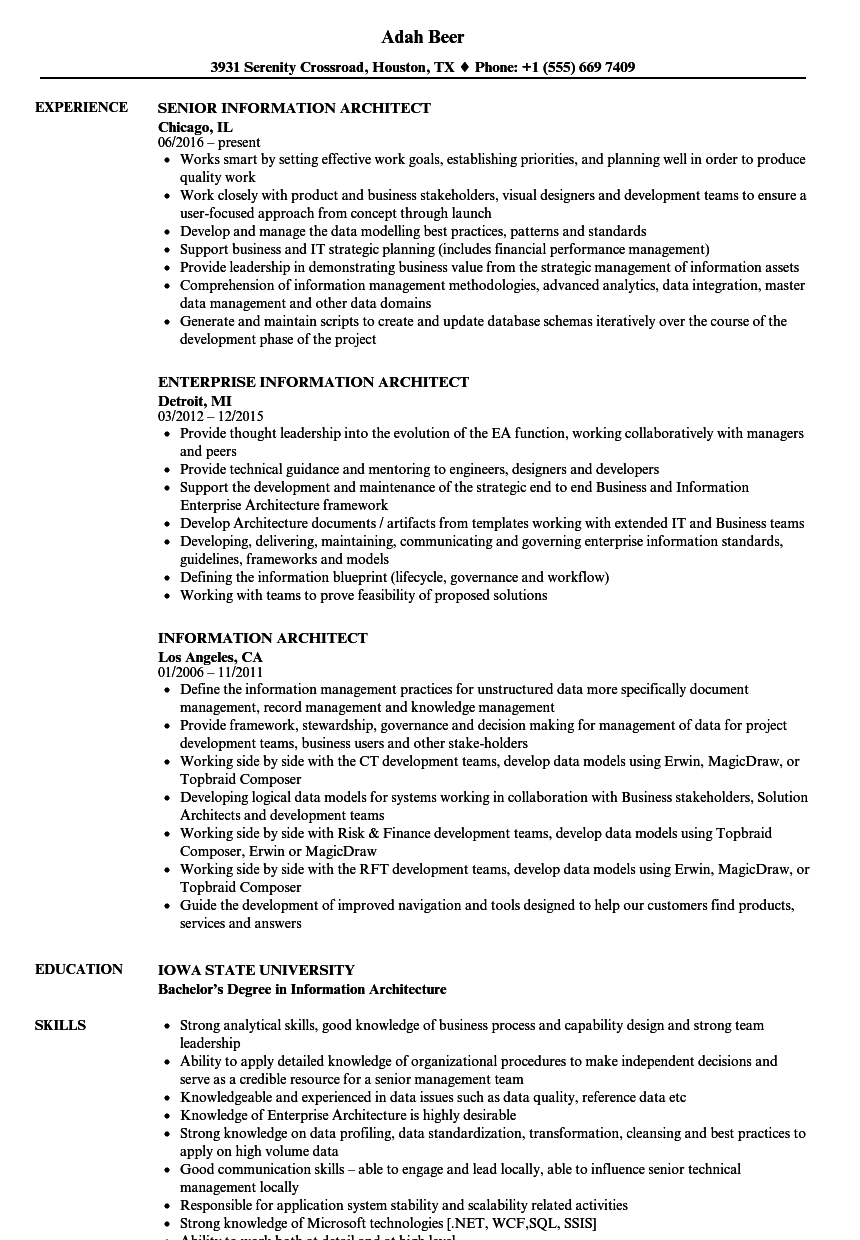 information architect resume samples