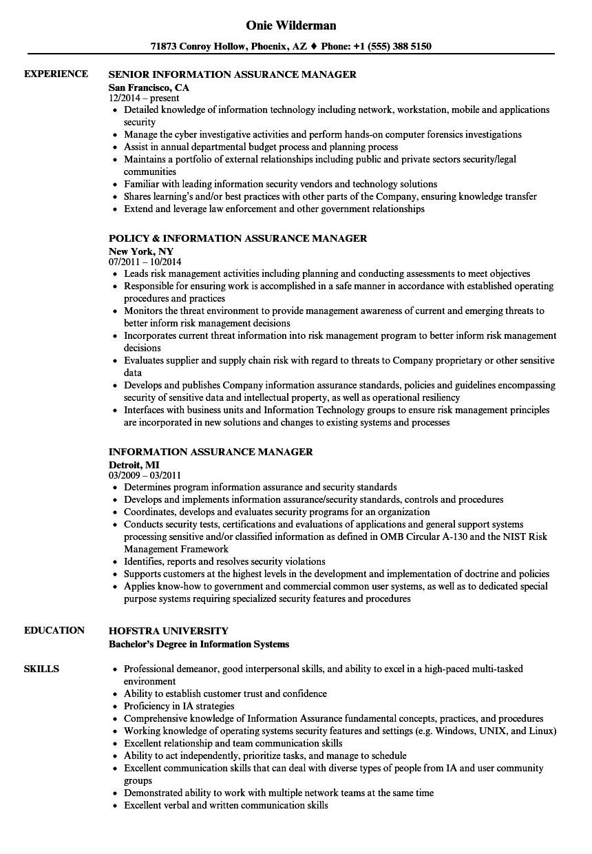 information assurance manager resume samples