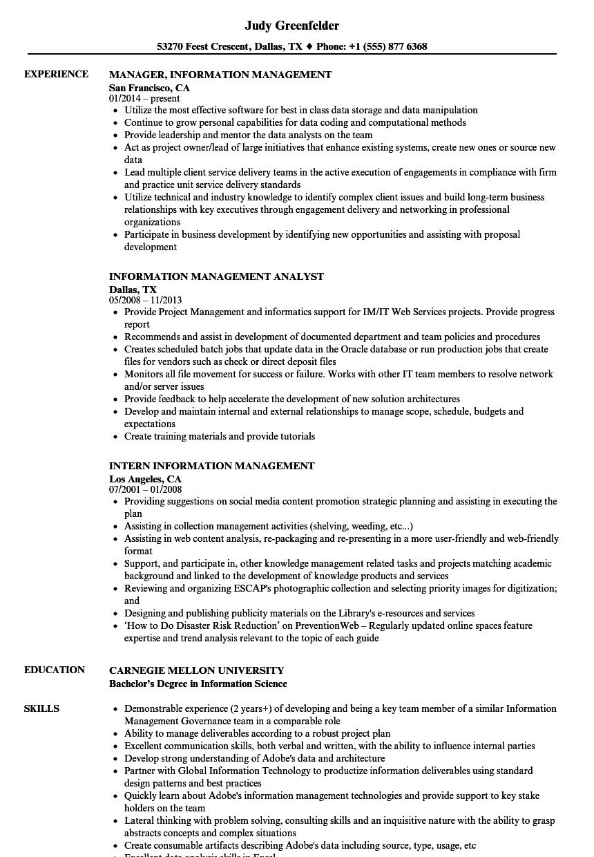 Information Management Resume Samples | Velvet Jobs