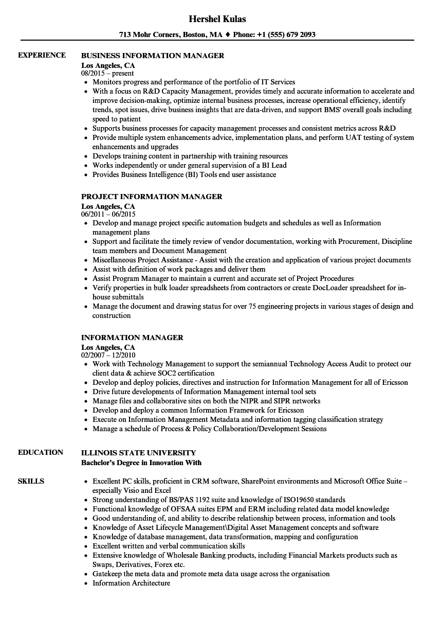 information manager resume samples