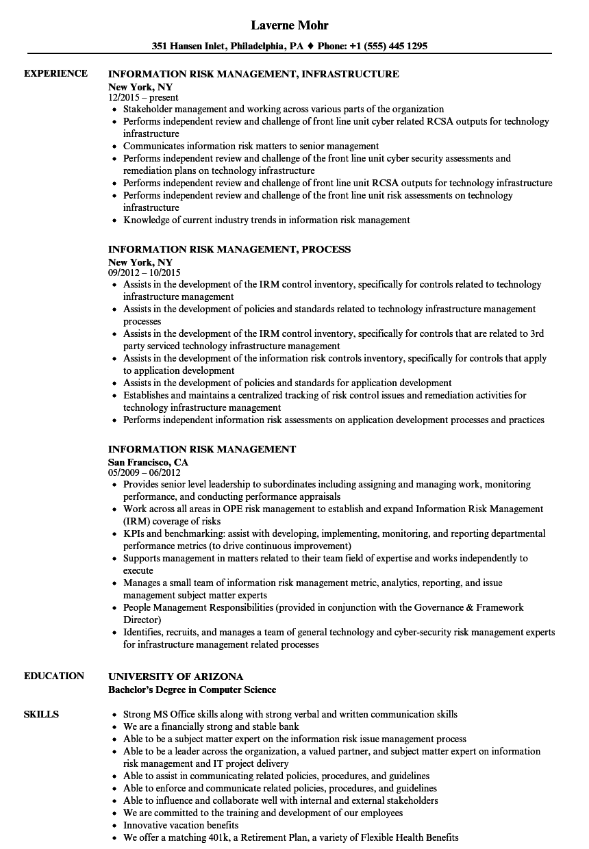 information risk management resume samples
