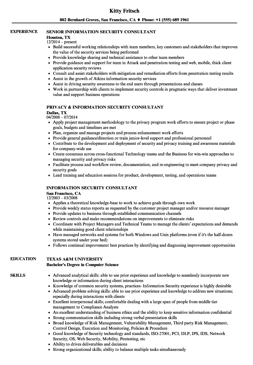 information security consultant resume samples