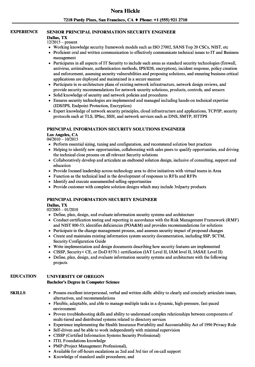 information security principal resume samples