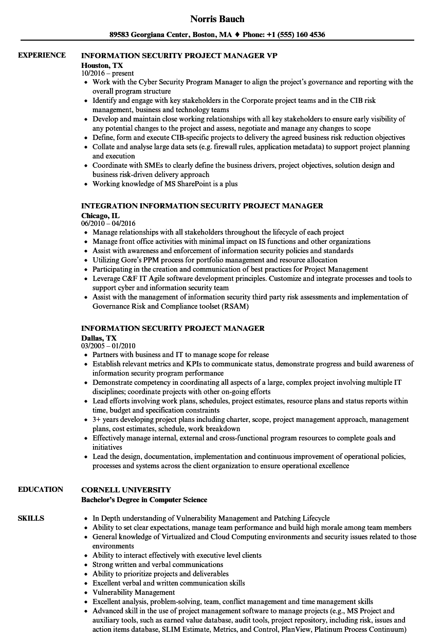 Information Security Project Manager Resume Samples Velvet Jobs