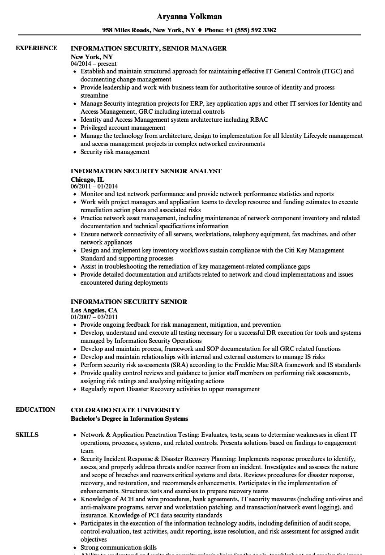 information security senior resume samples