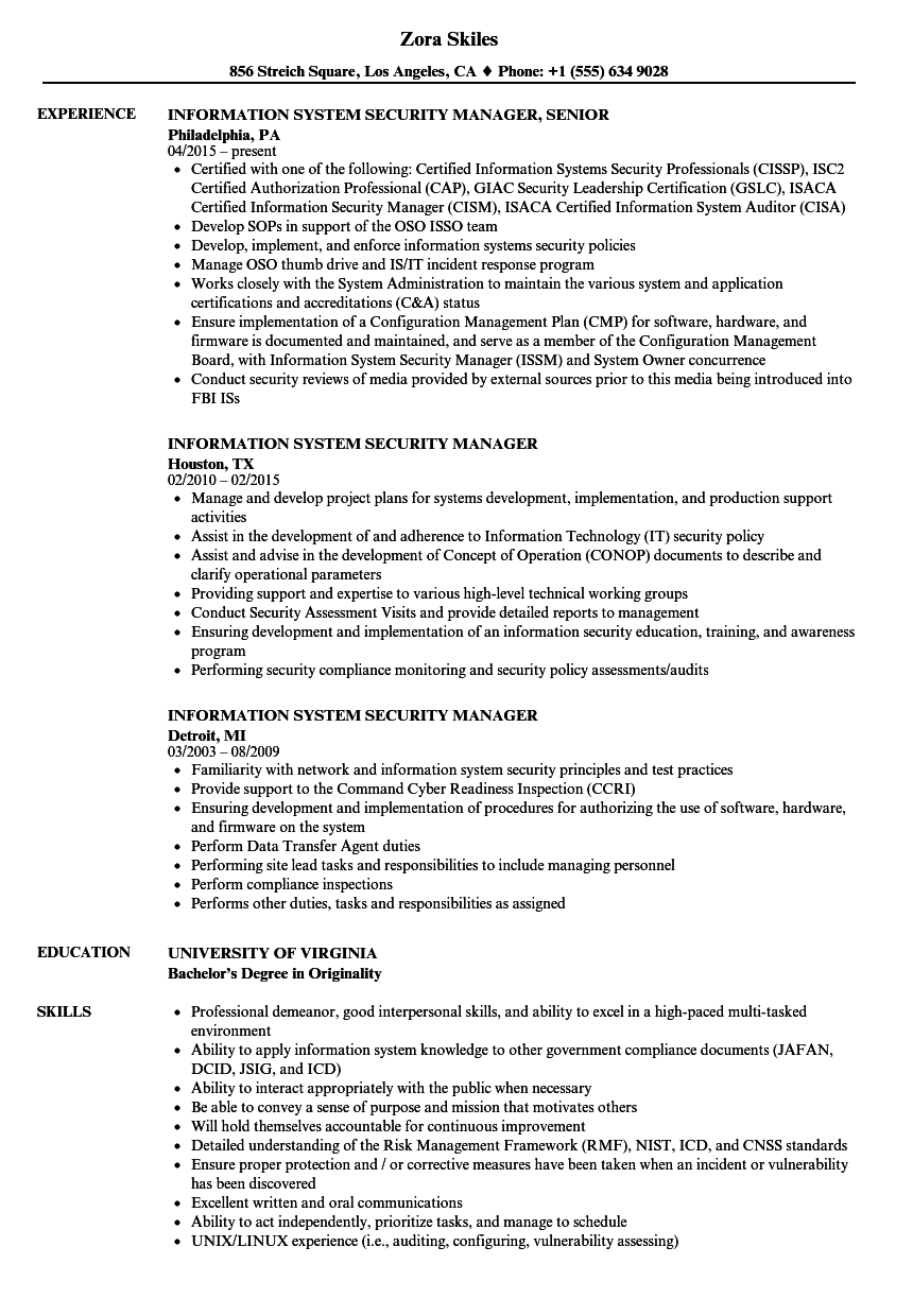 Superior Download Information System Security Manager Resume Sample As Image File
