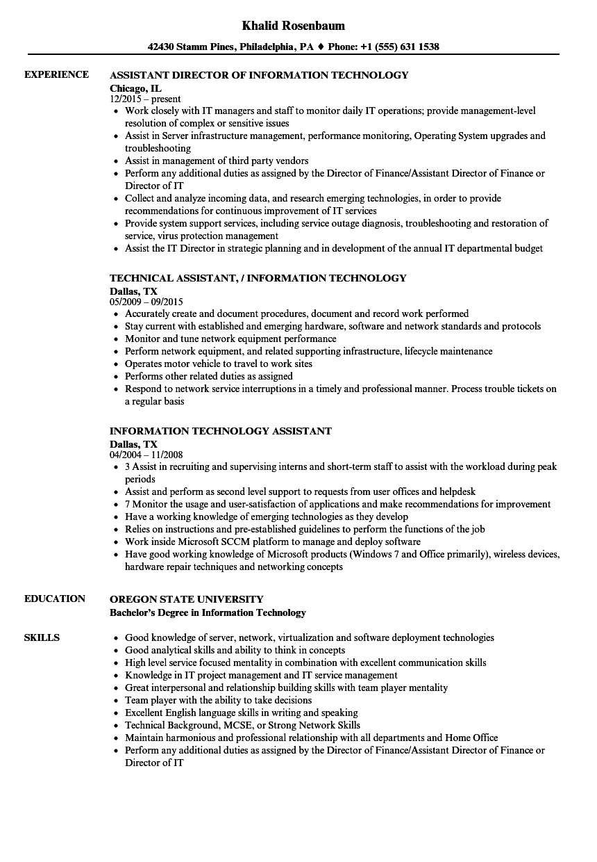 Download Information Technology Assistant Resume Sample As Image File  Information Technology Resume