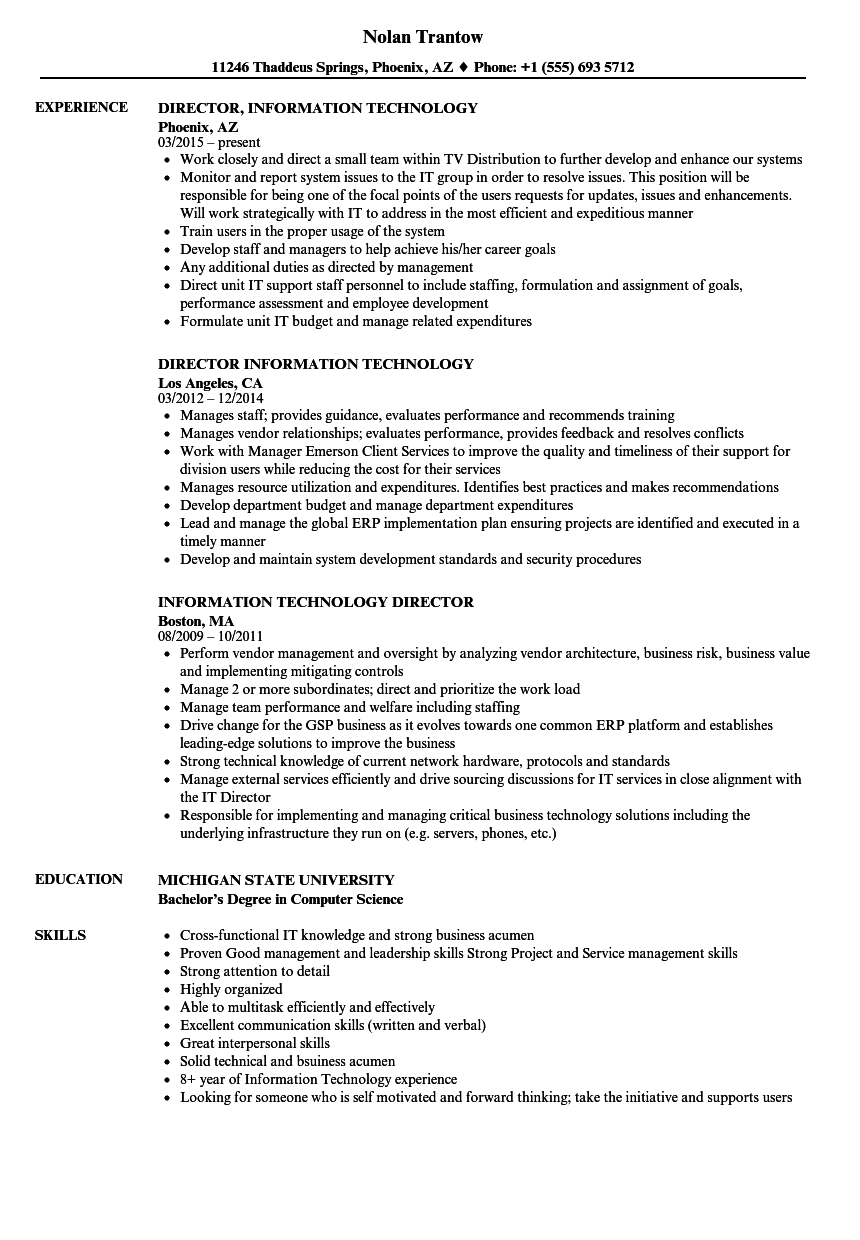 Information Technology Director Resume Samples | Velvet Jobs