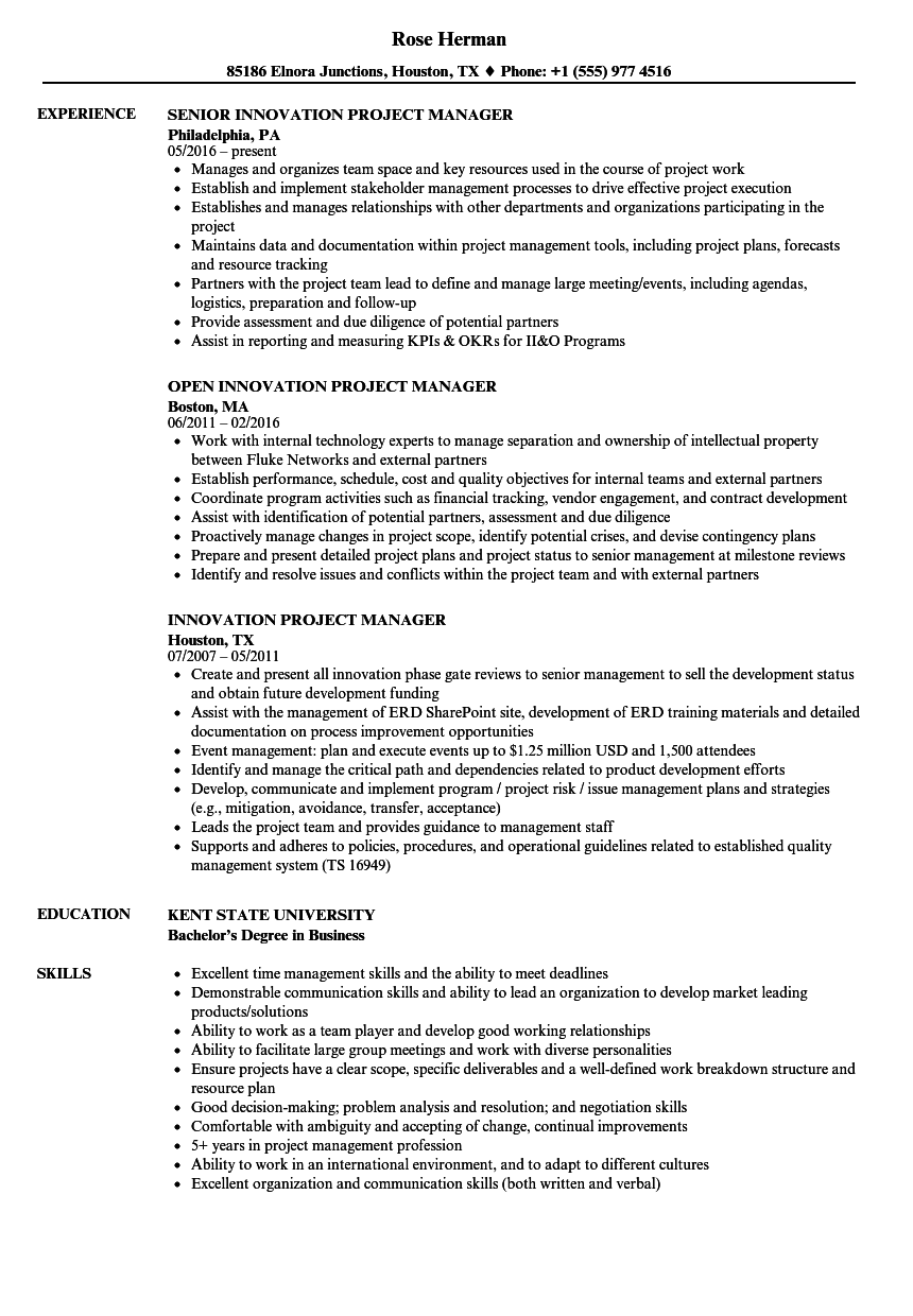 innovation project manager resume samples
