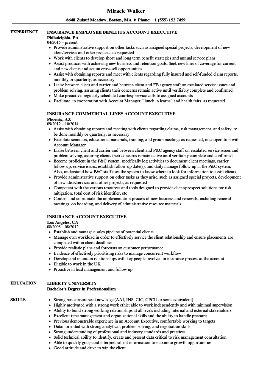 insurance account executive resume samples