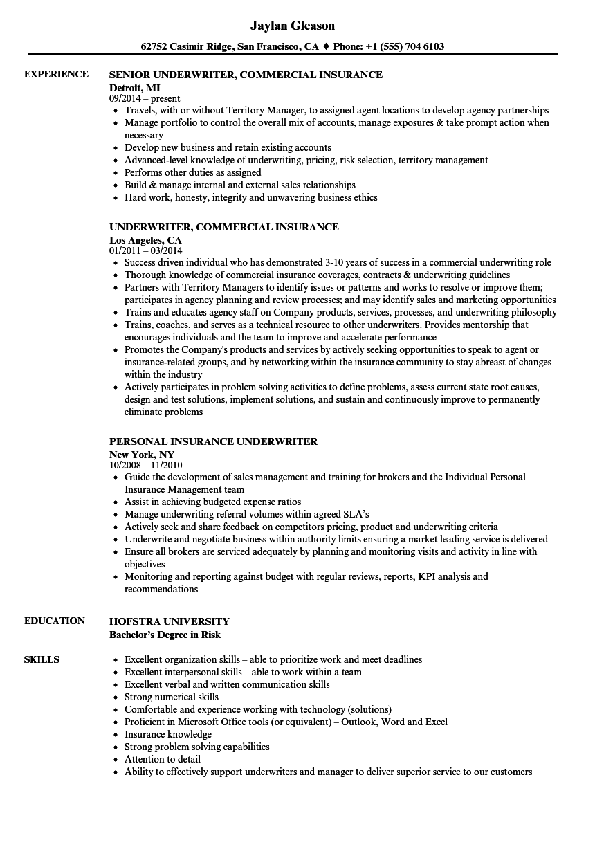 Insurance Underwriter Resume Samples Velvet Jobs