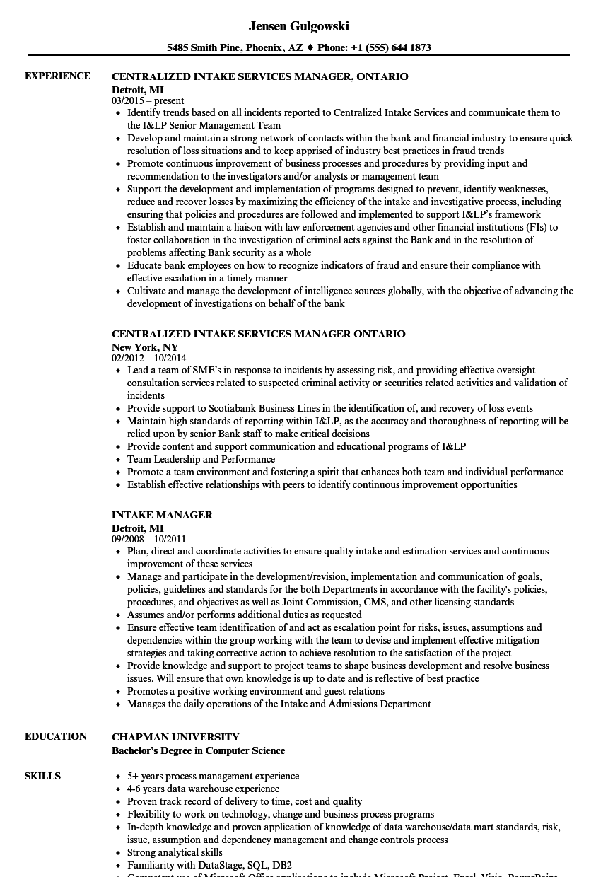 download intake manager resume sample as image file - It Director Resume Examples